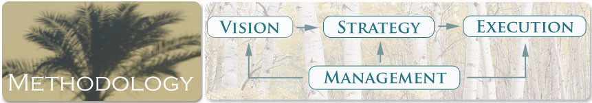Methodology Overview: Vision, Strategy, Management and Execution