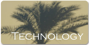 Information Technology Services and Consulting